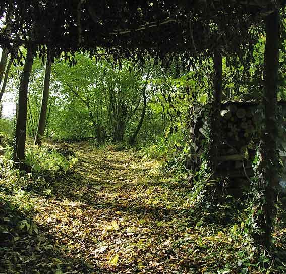 cabane d'été en automne