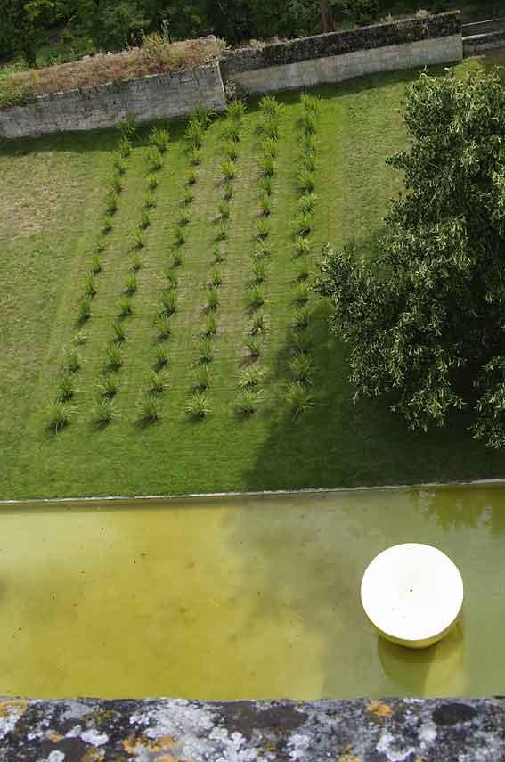 jardin de M. Pascal Cribier
