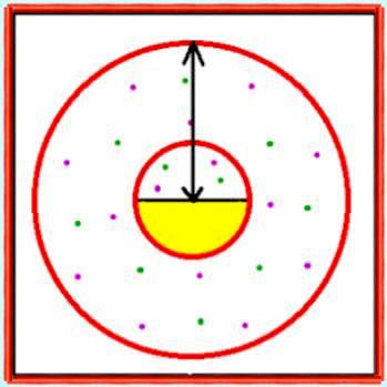 le mouvement s'est opéré et dessine des cercles