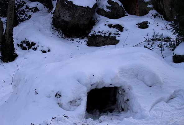 abri en forme d'igloo dans la neige